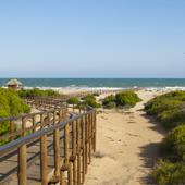 Playa-del-Carabassi